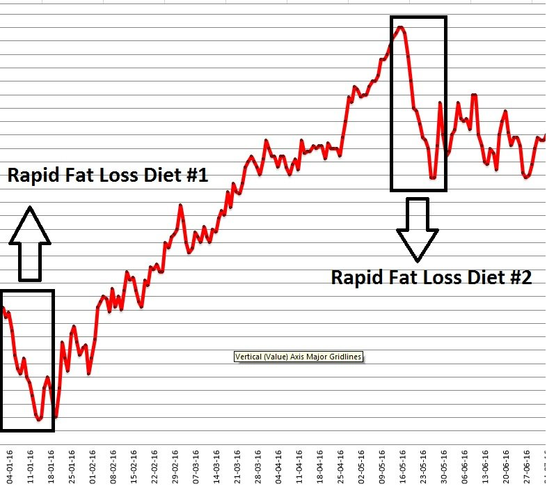 rapid fat loss diet graph
