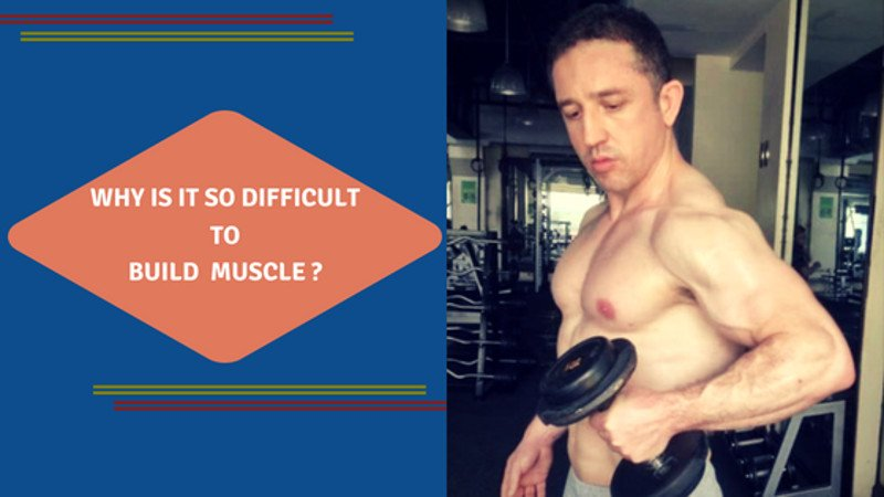 Reasons Why Is It So Difficult to Build Muscle